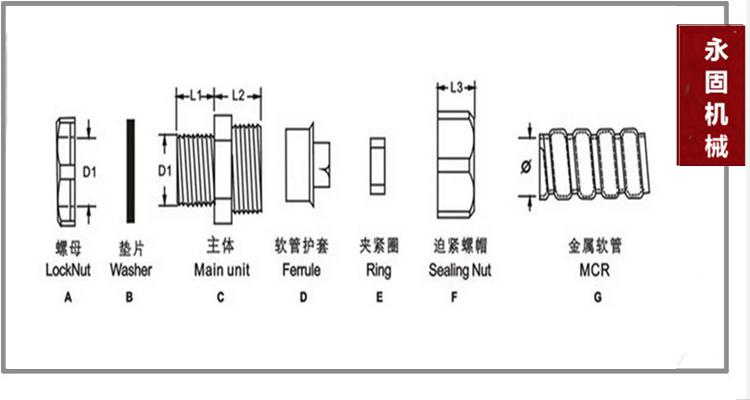 DPJ端式包塑软管接头产品样图